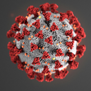 graphic of virus